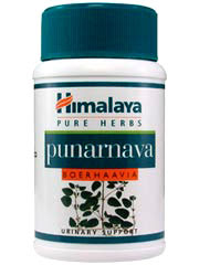 Edema herbal remedy punarnava