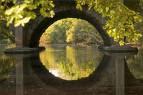 simetría - reflexión