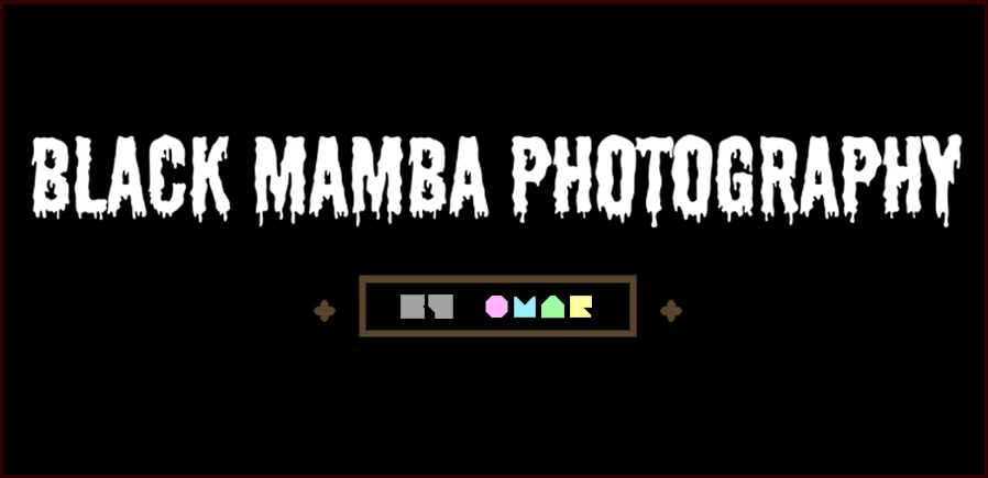 Black Mamba Photography