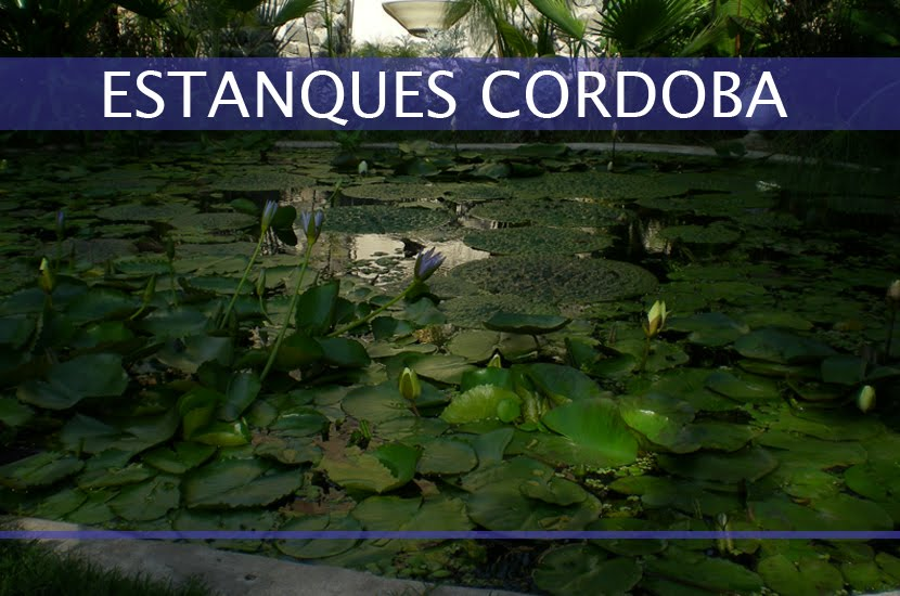 Estanques cordoba for Los estanques
