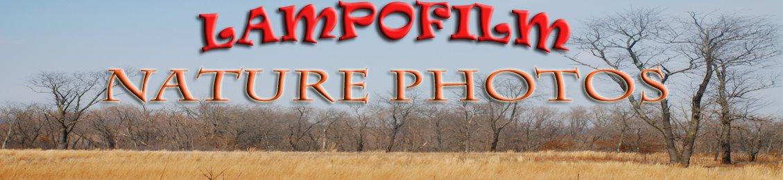 LampoFilm-Nature