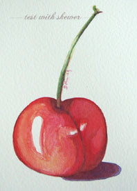 watercolour cherry