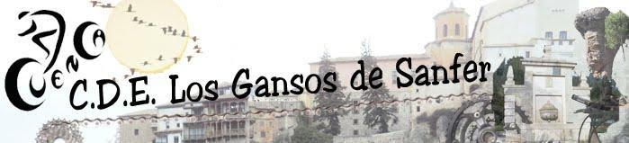 C.D.E. LOS GANSOS DE SANFER