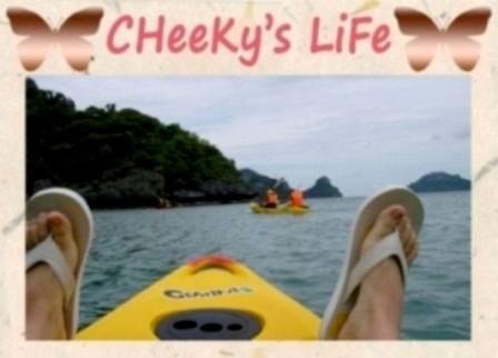 CHeeKy's LiFe