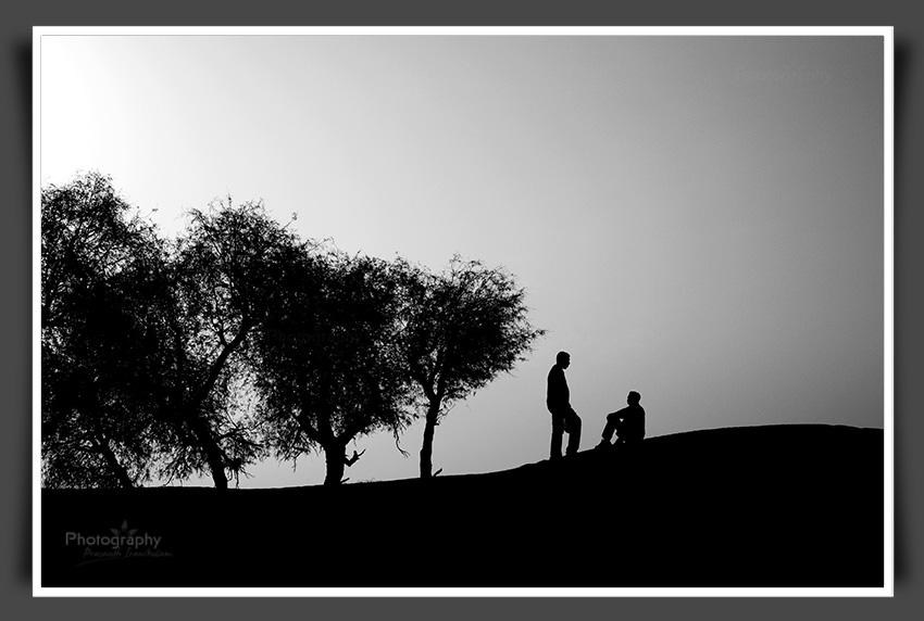 friends in the desert