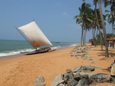 Šri Lanka Negombo2