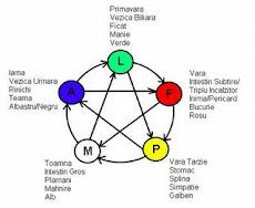 ciclul de creatie si control