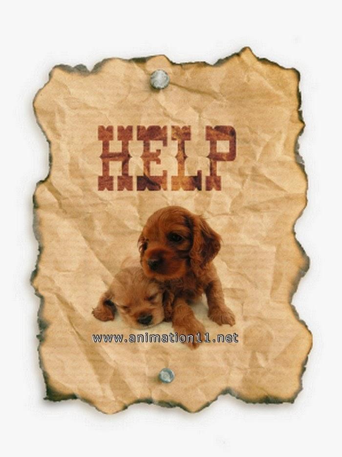 [help-wanted1.jpg]