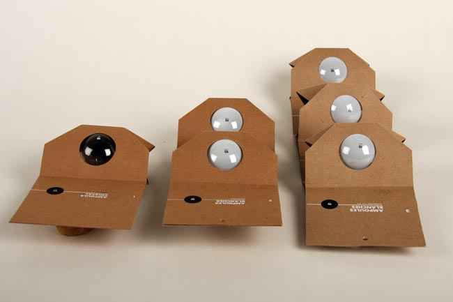 Packing Bulbs 3