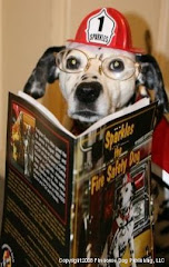 "Sparkles has read, ""Sparkles the Fire Safety Dog."" Have you?"
