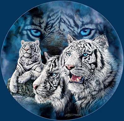 Hidden+images+tiger