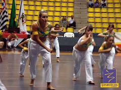 capoeira no GIMPA 2010