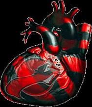 Nosso coração é Rubro-Negro
