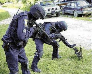 Soldados graciosos