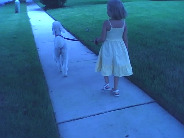 [Walk+9_2008]