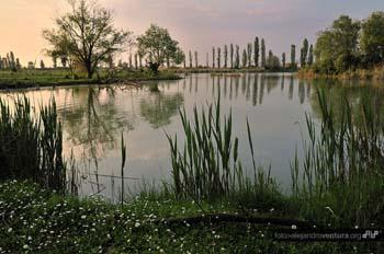 oasi delta del Po