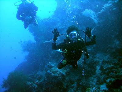 Going down! Menjangan Island, Bali