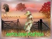 Selo do Blogue Antologia Poética