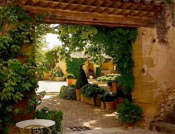 a year in provence peter mayle book review