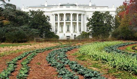 the rusty hoe: white house garden tour