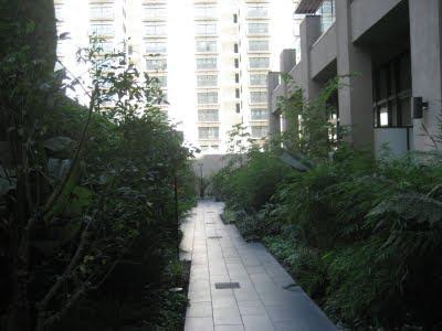 Rowan Lofts garden