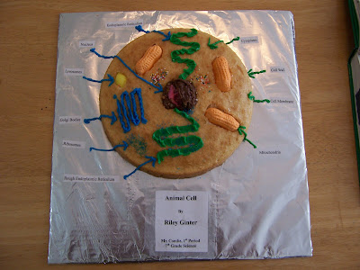 3D Animal Cell Project Ideas http://gintergang4.blogspot.com/2007/10/animal-cell-project.html