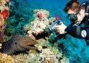 My Scuba Diving Blog