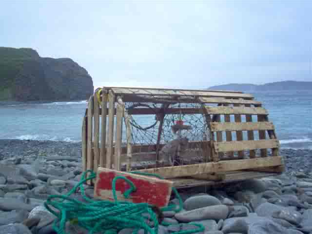 lobster pot awash