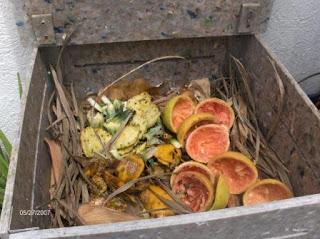 composta, maduración, descomposición, ecología