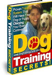 Dog Training Zone