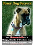 Boxer dog secrets