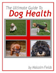 Dog Health Guide