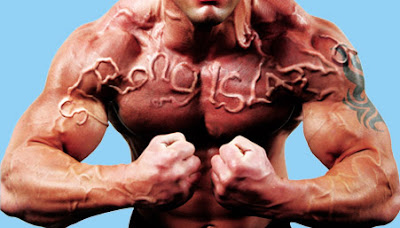 Steroids Bodybuilding Peptides Sarms And Low Testosterone