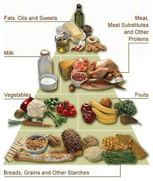 thefitteach the mixed type diet