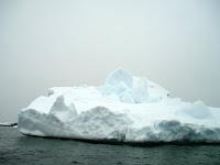 Overal ijsbergen