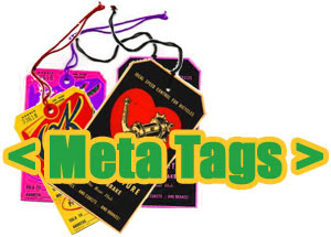 Meta tags for search engine optimization