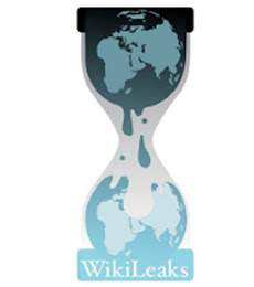Wikileaks - Informação pra informar