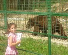 în grădina zoologică din Sibiu