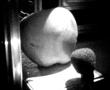 [applelight.jpg]