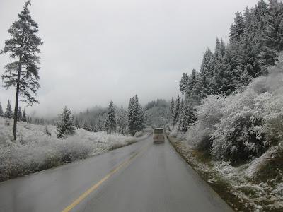 pemandangan yang luar biasa indah. serba putih!!! pohon yang putih ...