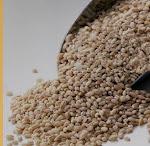Malt Cereal