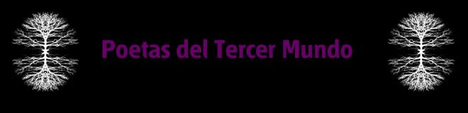 POETAS DEL TERCER MUNDO
