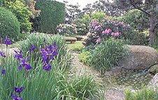le havre handicap jardin japonais - Jardin Japonais Le Havre