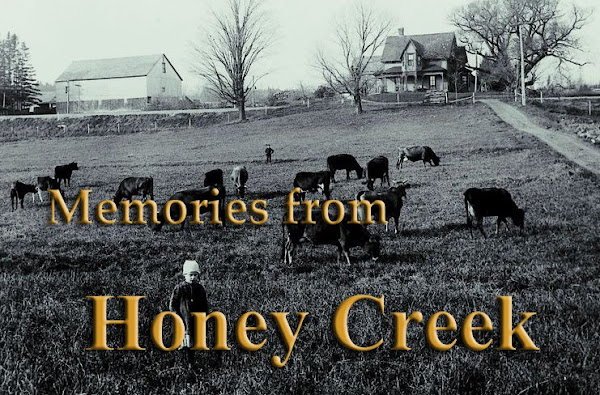 Memories from Honey Creek