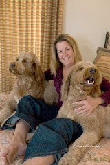Golden Doodles with A Woman of Gold