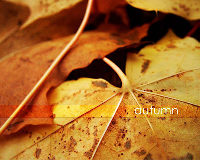 imagini toamna autumn