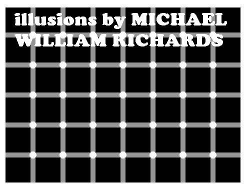 Illusions By Michael William Richards