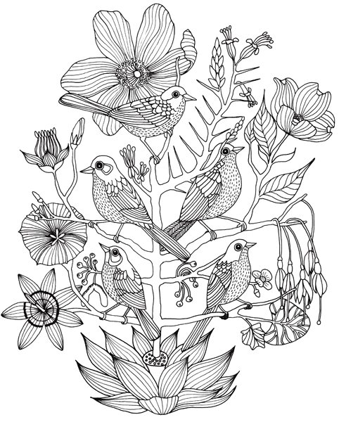 [sparrows+bnw_blog.jpg]