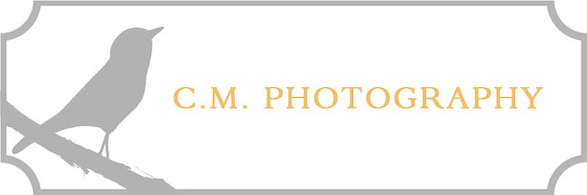 c.m. photography