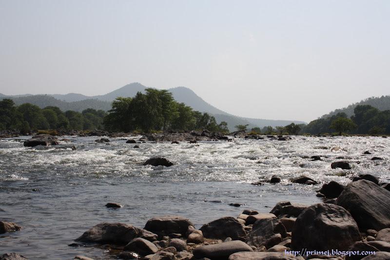Kaveri River at Muthathi